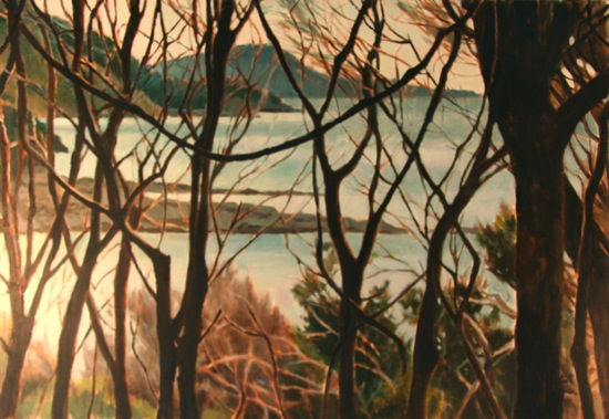 Vines, Cockle Bay (sold)